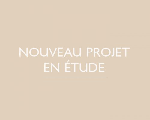 versailles-nouveau-projet-en-etude-patricia-coignard-audrey-pacaud-home-designer-interior-designer-agence-atmopsheres-design-patricia-coignard-audrey-pacaud-architecvture-dinterieur-decoration-deco-interioir-designer-meuble-sur-mesure-paris-oise-