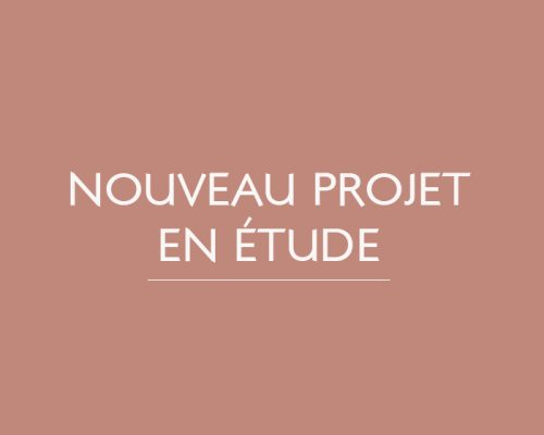 nouveau-projet-en-etude-patricia-coignard-audrey-pacaud-home-designer-interior-designer-agence-atmopsheres-design-patricia-coignard-audrey-pacaud-architecvture-dinterieur-decoration-deco-interioir-designer-meuble-sur-mesure-paris-oise-