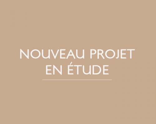 creve-coeur-le-grand-nouveau-projet-en-etude-patricia-coignard-audrey-pacaud-home-designer-interior-designer-agence-atmopsheres-design-patricia-coignard-audrey-pacaud-architecture-dinterieur-decoration-deco-interior-designer-meuble-sur-mesure-paris-oise